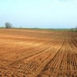 gambar-tanah-kosong-untuk-pertanian-150x150